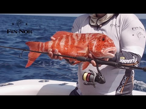 Reef Fishing With Dropper Rigs