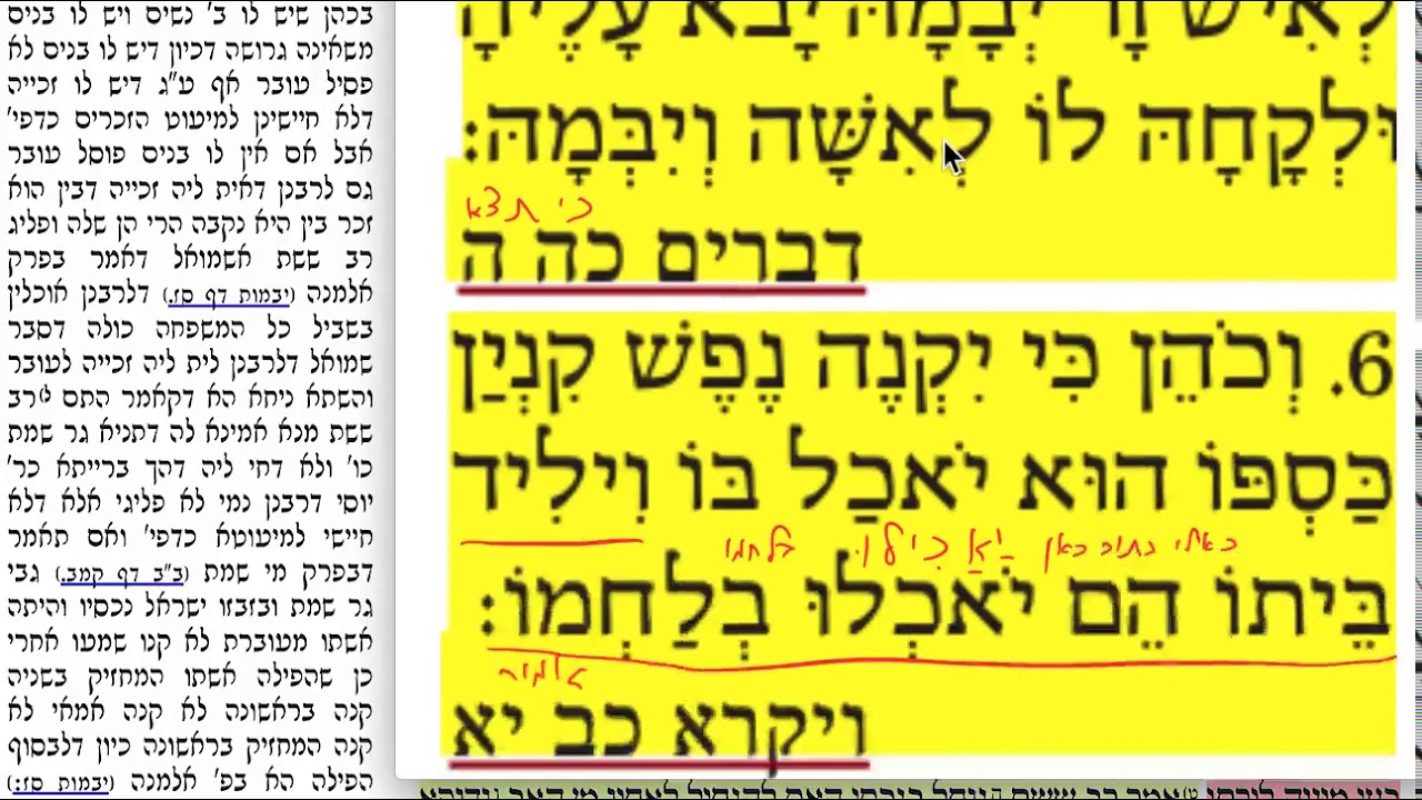 דף יומי מסכת נידה דף מד Daf yomi Niddah daf 44