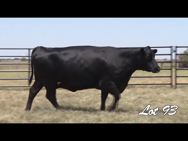 Pollard Farms Lot 93