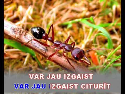 """Dzelteni aizkari - karaoke """"Agrais rīts"""" www.kar.lv"""