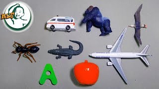 Words that start with A,B,C | Learn alphabet  with common toys!