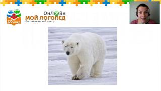 Животные Севера для детей 6-7 лет. Мой  Логопед