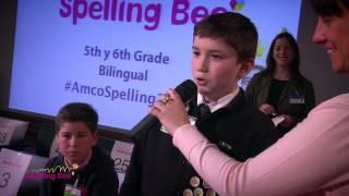 spain final amco spelling bee 2015