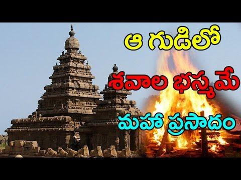Unbelievable Facts About Bhasma Aarti In Ujjain Mahakaleshwar   శవాల బుడిదే అక్కడి ప్రత్యేకత   CC