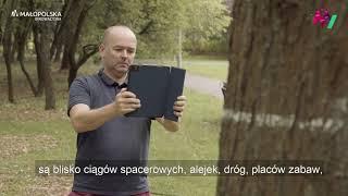 Bezpieczny park - aplikacja mobilna