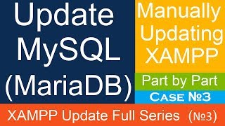 How to Update MySQL (MariaDB) in XAMPP Local Server