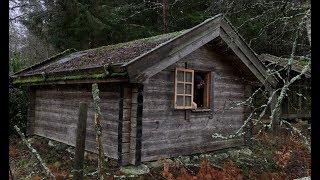 Off Grid Log Caḃin Solo Winter Overnighter Camp - Snowstorm, Rain, Swedish Wilderness