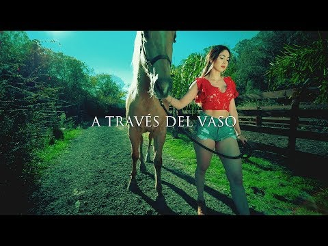 Johnny Luis - A Través Del Vaso (Video Oficial) HD