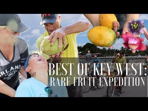 RARE FRUITS BY BIKE: Experience the Real Treasure of Key West (Recap/Teaser)