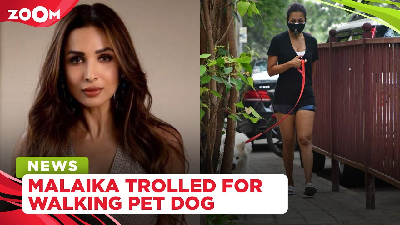 Malaika Arora TROLLED for taking her pet dog on a walk amidst the lockdown