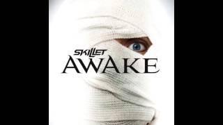 Skillet - Awake & Comatose Albums