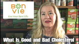 What Is Good and Bad Cholesterol?  | BonVie Weight Loss
