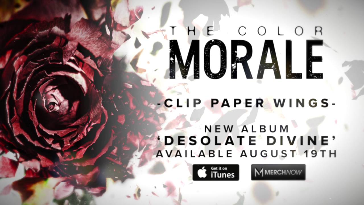 the-color-morale-clip-paper-wings-fearless-records
