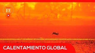 ¿Cuál es la diferencia entre un planeta 1,5°C más caliente frente a uno 2 °C? | El Espectador