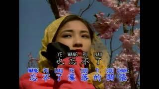 Pu Liau Ching