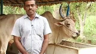 organic farming by nithyanandam(Makkal tv)