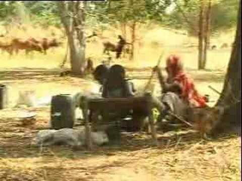 قبيلة المسيرية ... أكبر القبائل العربية في وسط السودان thumbnail