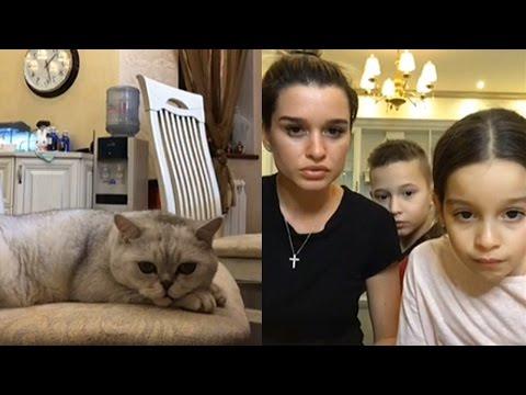 ШОК! Кот Ксюши Бородиной запустил трансляцию в Инстаграме, отменили бой Нурмагомедова