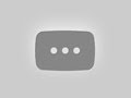 Cherry blossom trees in front of skyscrapers, Frankfurt am Main, Germany - Stock Footage