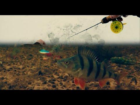 балансир камера рыбалка