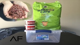 How To Breed Your Own Fishing Worms..EASY..MONEY SAVER!!!!!