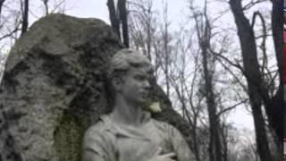 ГОРИ ЗВЕЗДА МОЯ, НЕ ПАДАЙ  стихи С. Есенина, музыка С. Михайлова, исп.  Д. Аникеев