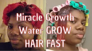 GROW HAIR REALLY FAST USING ALL NATURAL PRODUCT Miracle Growth Water™️ (www.miraclegrowthwater.com)