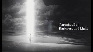 Jerusalem Lights Parashat Bo 5781: Darkness and Light