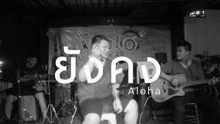 ยังคง - POTATO [ Aloha Acoustic Cover ]