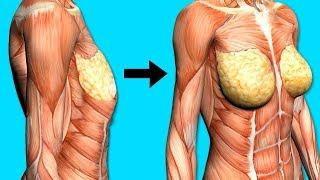 как сделать грудь больше упражнениями
