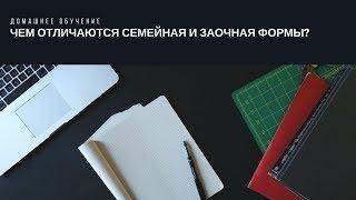 Хомскулинг в РФ: семейное и заочное обучение