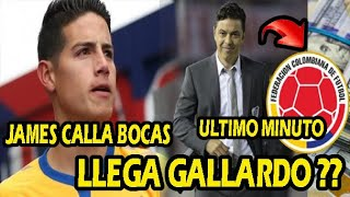 PRENSA INGLESA¡ JAMES RODRIGUEZ IRREMPLAZABLE / LLEGA?? MARCELO GALLARDO A SELECCION COLOMBIA
