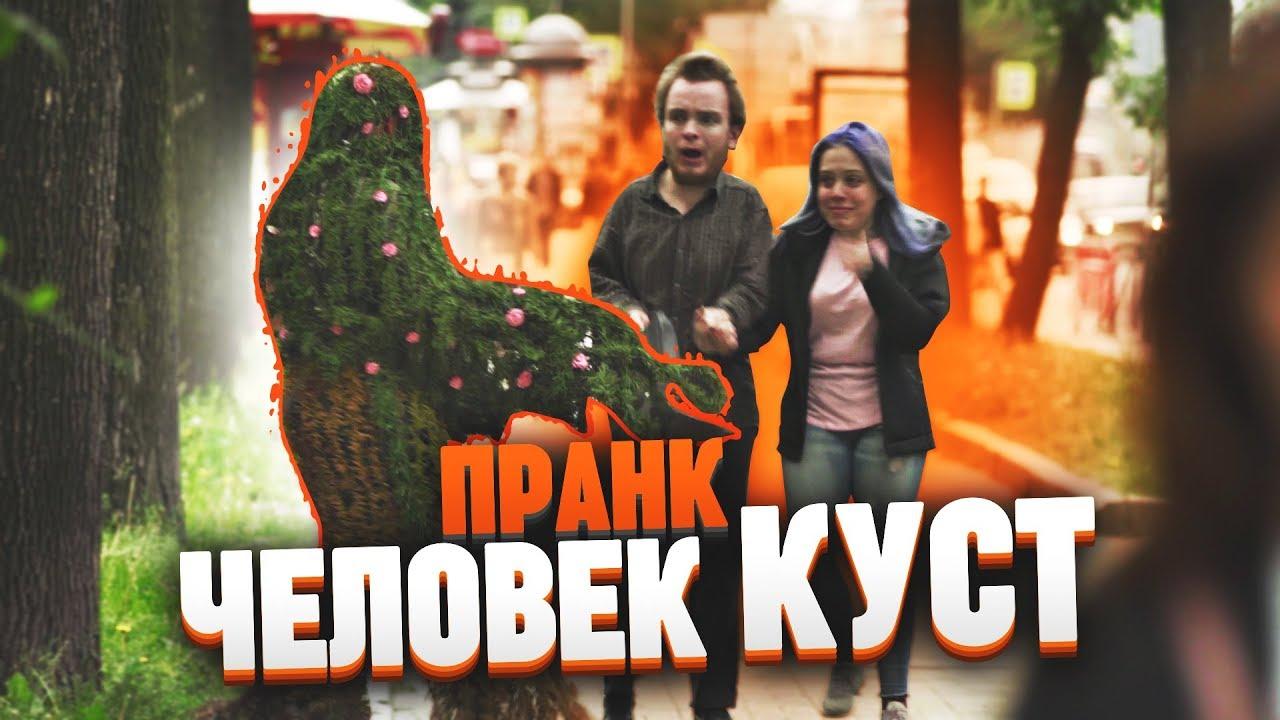 Человек куст напугал прохожих ПРАНК / Подстава - проверка пранков vjobivay