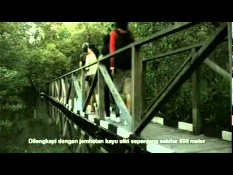 "Video pariwisata Balikpapan - The Gateway to Borneo ""Tropical Forest"""