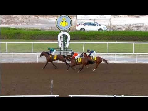 Jebel Ali 15/12/17 Race 6
