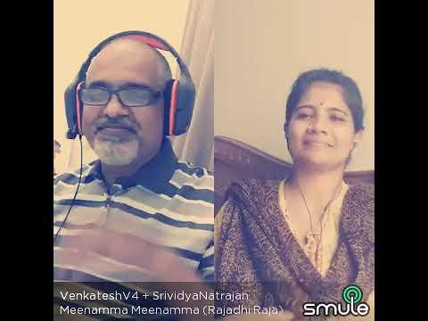 Meenamma meenamma song from Rajaadhi raja