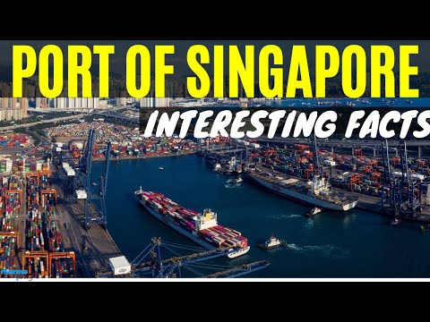 PORT OF SINGAPORE - Interesting Facts #singapore #singaporeport #PSA