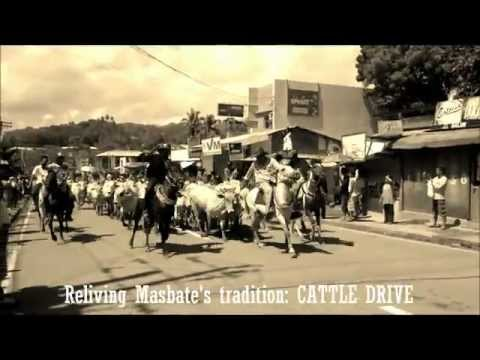 reliving masbate's tradition: CATTLE DRIVE