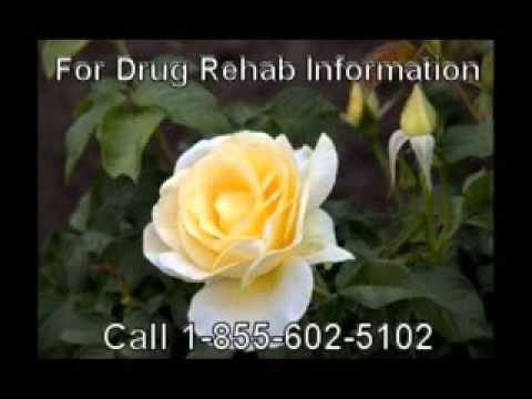 Best Government Based Drug Rehab Free Around Rochester
