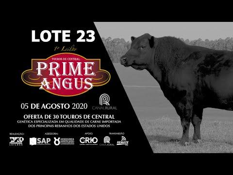LOTE 23    BLACK OPAL TE919 FUEGO Prod  Agência El Campo