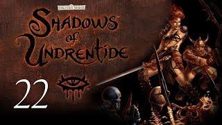 Neverwinter Nights: Shadows of Undrentide - 22 - Dinner with a Dragon