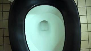 Kohler Toilet at Walmart