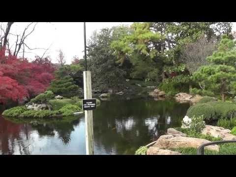 Fort Worth Japanese Gardens