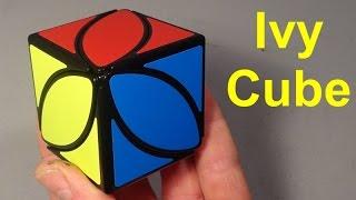 Ivy Cube Puzzle Unboxing & Solve
