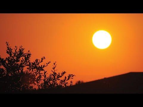 Here Comes The Sun: Sunshine And Its Effects On Health, Sleep And Memory - Professor Steve Jones