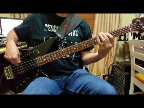 Descendents - We Bass Cover