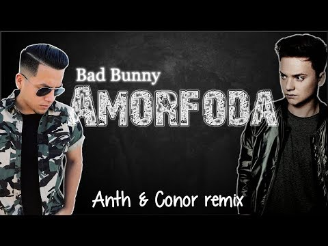 Lyrics: Bad Bunny - Amorfoda (Anth & Conor remix)