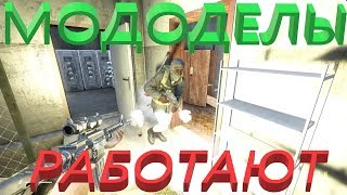 DayZ 0.63 Животные и железная башка :)))