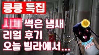 고독사, ○○썩은 냄새, 리얼 후기, 납량특집, 킁킁특집