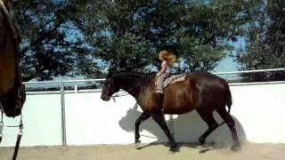 Sianna & Cessna - 3 year old girl riding 16.3 hand horse